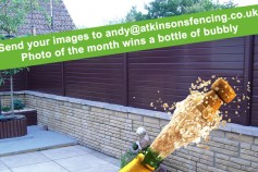 Photo Of The Month Wins A Bottle Of Bubbly